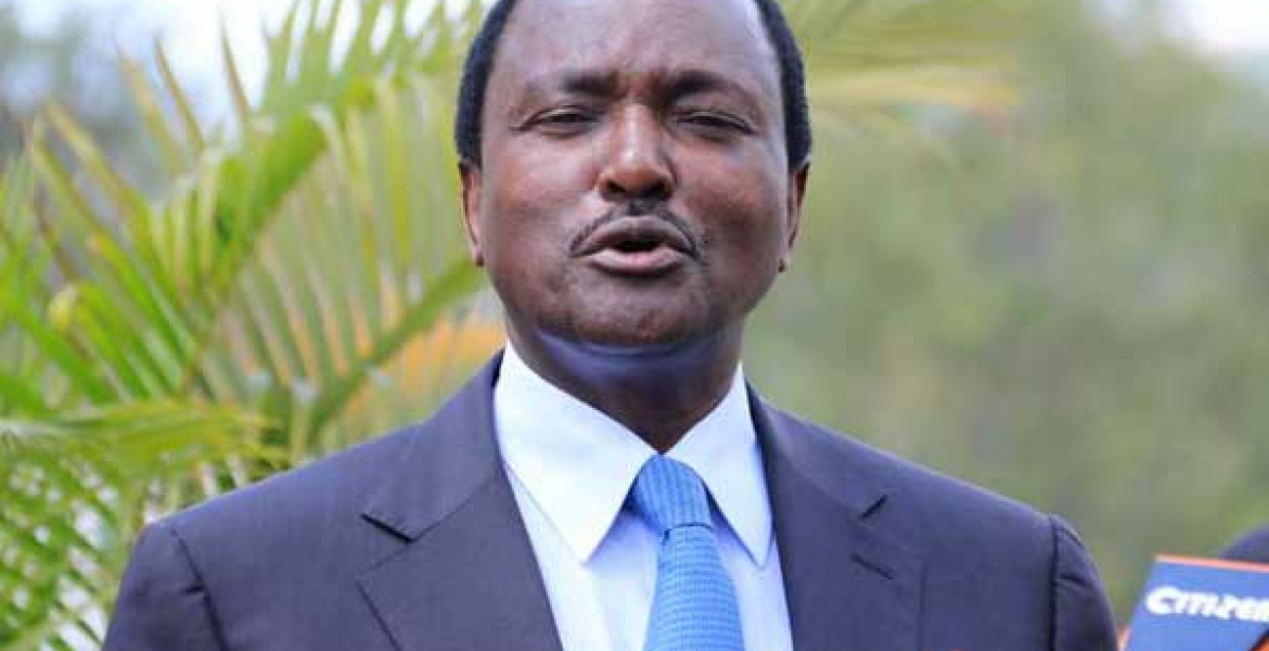 Image result for Kalonzo's