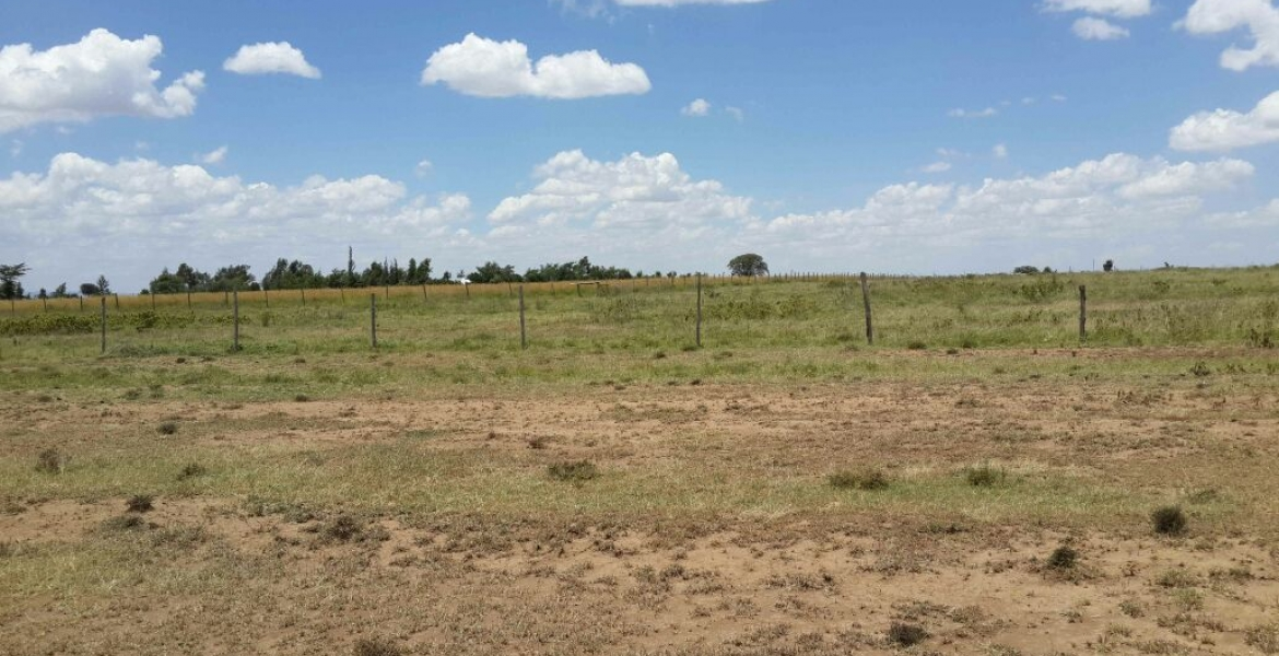 Gov't to Impose Taxes on Idle Land in Kenya