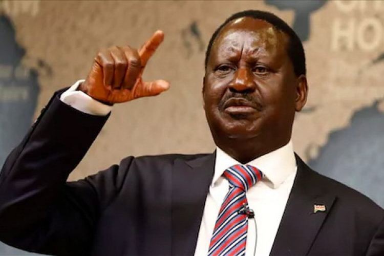Raila Speaks About Secession in His Address to Kenyans Living in the US
