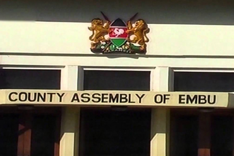Embu Majority Leader Defends Allocation of Sh11 Million Gym Fees for 'Overweight' MCAs