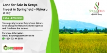 Affordable Investment Opportunity at Springfield - Nakuru